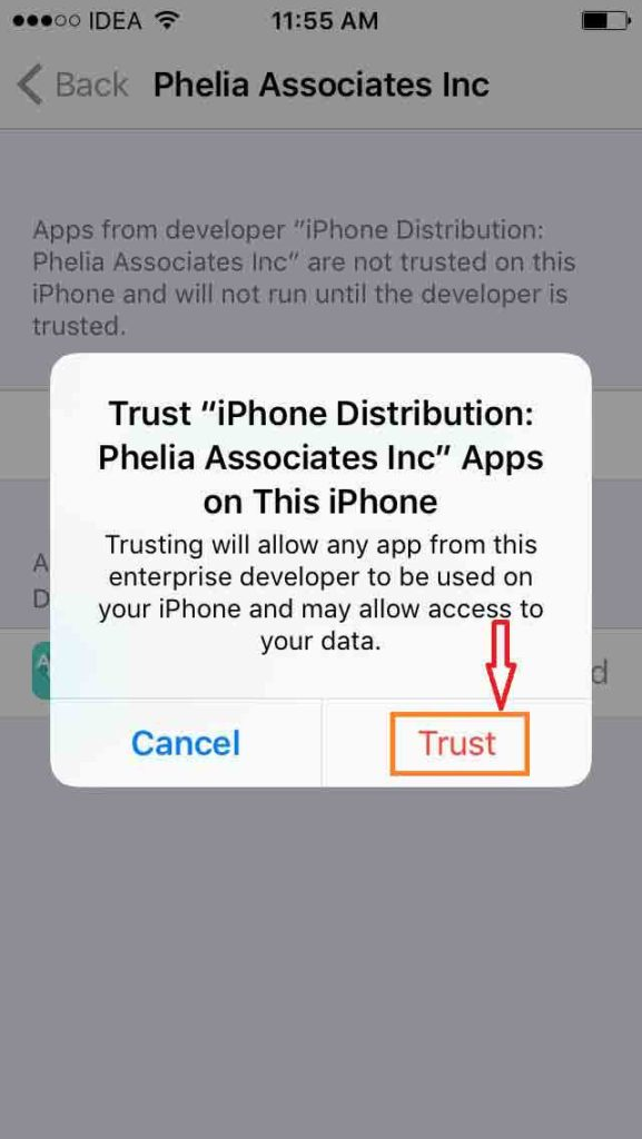 Trust Phelia Assosicates Inc
